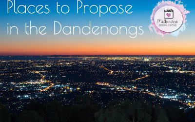 Places to Propose in The Dandenongs