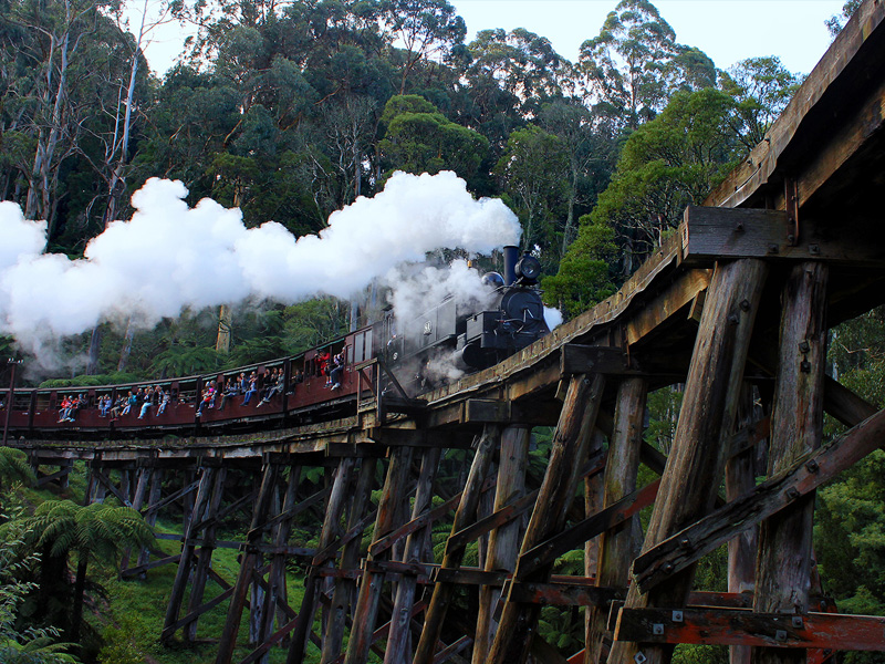 Bridal Expos Melbourne - Places to Propose in the Dandenongs - Puffing Billy